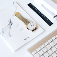 Mesh Strap Watch in Gold